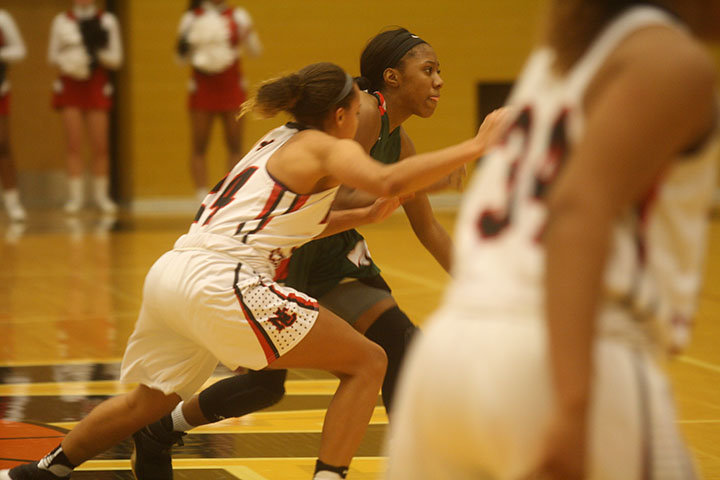 Girls Basketball vs. North Central (Sectionals): Photo Gallery