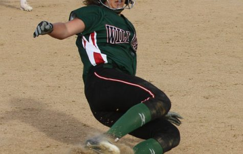 Softball vs. Fishers: Photo Gallery