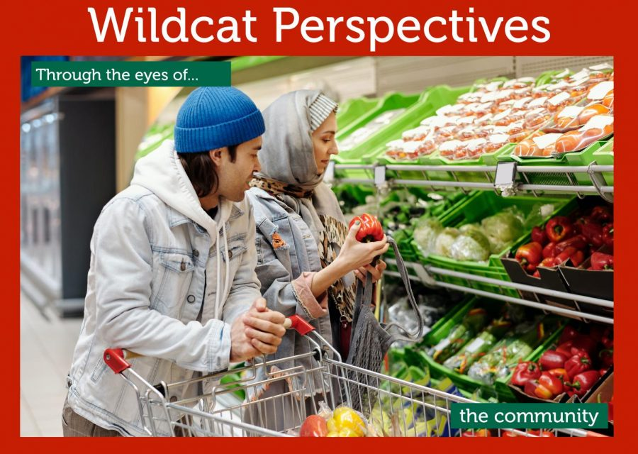 Wildcat perspectives: Through the eyes of the community