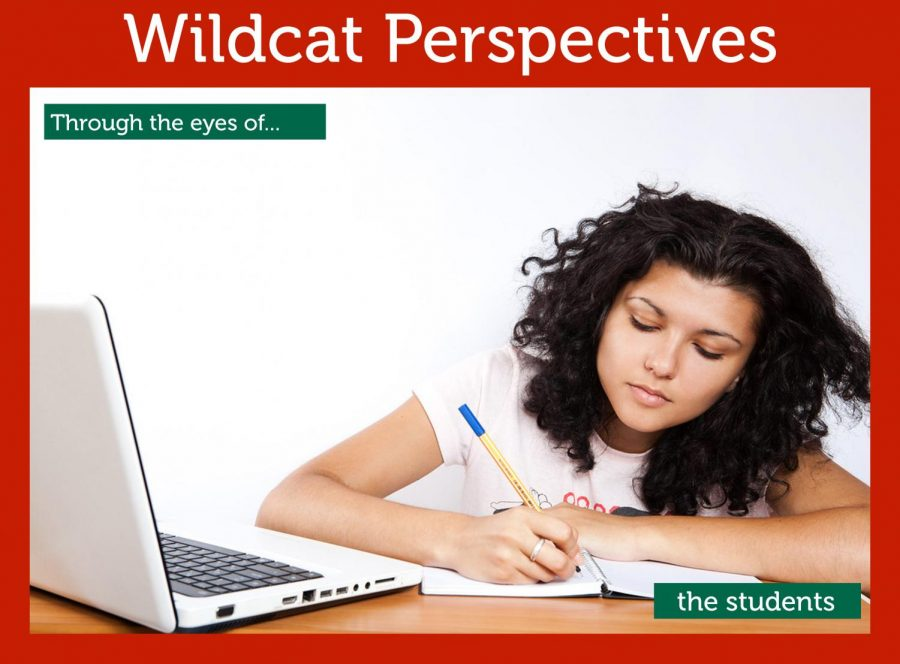 Wildcat Perspectives: Through the eyes of the students