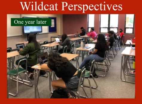 Wildcat perspectives: One year later